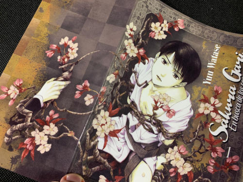 Sakura Gari - Sobrecubierta Detalle